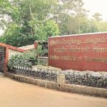 IIT-Madras researchers identify alternative source for anti-cancer drug Camptothecin