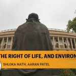 The Constitution must guide us in crafting a distinctly Indian, climate-friendly development paradigm
