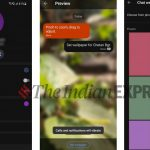 Signal gets custom Chat Wallpapers feature: Here's how to use it